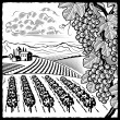 Vineyard landscape black and white — Stock Vector
