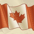 Vintage Canadian Flag — Stock Vector #6258518