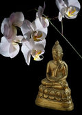 Bronze Buddha and Orchid — Stock Photo