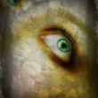 Grunge eye. — Stock Photo #5395597