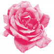 Halftone rose — Stock Photo