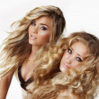 Blond sisters - Stock Photo