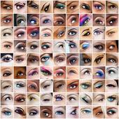 Fotos de 81 olhos. — Foto Stock