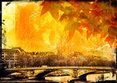 Grunge 巴黎桥和叶子背景 — 图库照片
