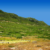 Hill in Cape Point Nature reserve — Stock Photo