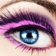 Macro of eye with fake eyelashes. - Stock Photo