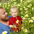 Stock Photo: Father and baby boy in flower field