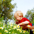 Father and son in flowers — Stock Photo