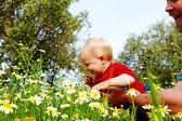 Ojciec i syn w kwiaty — Zdjęcie stockowe