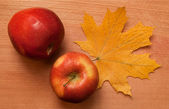 Still-life with apples and leaves — Stock Photo