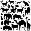 Animal Silhouettes — Stock Vector #5461501