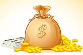 Bag Full of Money — Stock Vector