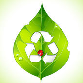 Recycle on Leaf — Stock Vector