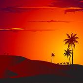 Sunset in Desert — Stock Vector