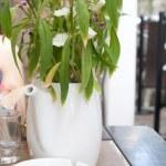 White flowers in white pot — Stock Photo #6308764