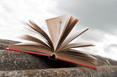 Open red book — Stockfoto