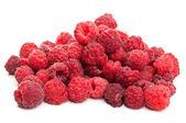 Fresh raspberry — Stock Photo