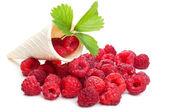 Fresh raspberry and green leaf — Stock Photo