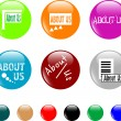 Button about us colored icon - Stock Vector
