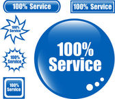 SERVICE 100% Web Button — Stock Vector