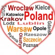 Poland Heart and words cloud with larger cities — Stock Vector