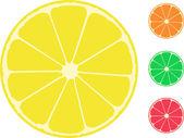 Citrus fruit. Orange, lemon, lime, grapefruit — Stock Vector