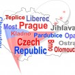 Czech republic map and words cloud with larger cities — Stock Vector