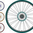 Bike wheel set - vector illustration isolated on white — Stock Vector #6550563