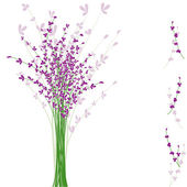 Summertime purple Lavender flower — Stock Vector