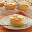 Freshly baked coconut vanilla cupcakes — Stock Photo