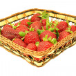Cesta de fresas — Stock Photo #5474237