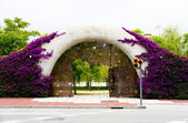 Puerta al jardín — Stockfoto