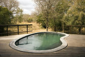 Pool on a wooden deck at a lodge in Africa — Stock Photo