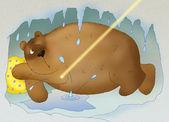 Fat lazy bear — Stock Photo