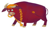 Furious bull — Stock Photo