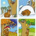 四个季节 — 图库照片