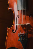 Classic violin — Stock Photo