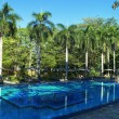 Foto Stock: Swimming pool in jungle