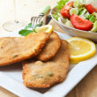 Breaded meat - Foto Stock