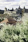 Old Castle on Kamenets-Podolsky — Stock Photo
