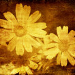 Royalty-Free Stock Photo: Abstract floral grunge background