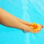 Beautiful female legs in the pool — Stock Photo #5532431