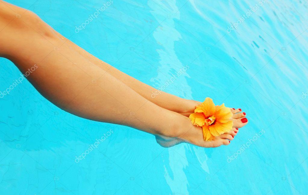 http://static6.depositphotos.com/1053646/553/i/950/depositphotos_5532431-stock-photo-beautiful-female-legs-in-the.jpg
