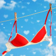 Women's bra — Stockfoto