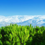 Beautiful mountains — Stock Photo #5672117
