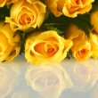 Bouquet of Yellow Roses with reflection — Stock Photo