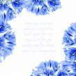 Stock Photo: Blue flower border