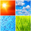 Nature backgrounds collage — Stock Photo