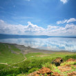 Peaceful view on lake Nakuru — Stock Photo #5936146