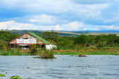 Tourist resort on the lake Naivasha — Stock Photo